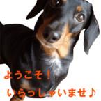 BEAN'S FACTORY*まき