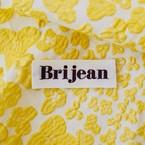 Brijean  ブリジャン