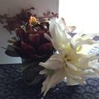 atelier Lotus(ロテュス)