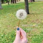 WAKUWAKU~Sanyo~