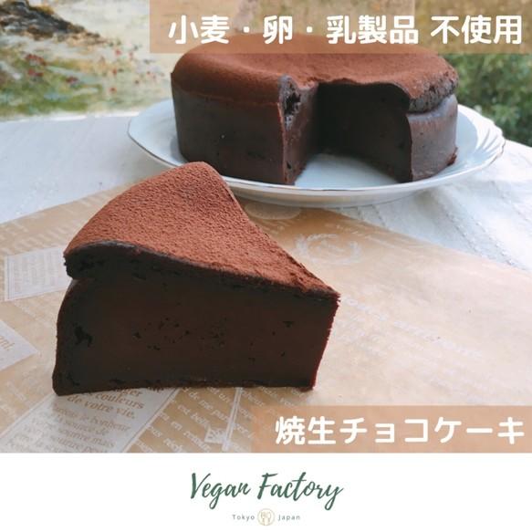 チョコ ケーキ 生