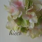 hicco