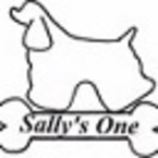 Sallys One