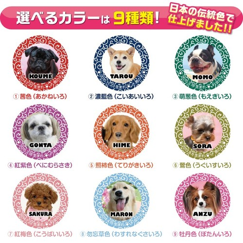 の 名前 和風 犬 愛犬の名前、どうやって決める? 診断サイトや名前ランキングをご紹介!|雑学|ドッグパッド