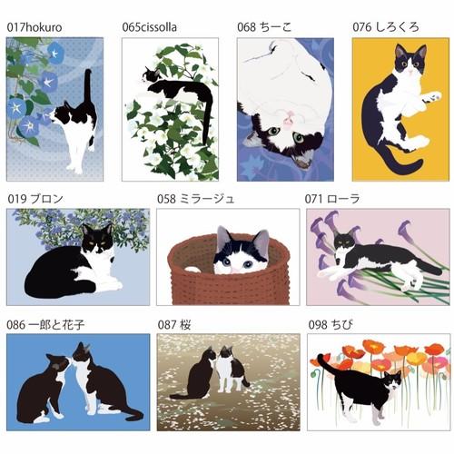 白黒猫 はちわれ猫 ポストカード10枚セット イラスト Iwaimura 通販 Creema クリーマ ハンドメイド 手作り クラフト作品の販売サイト