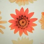 Tak daisy
