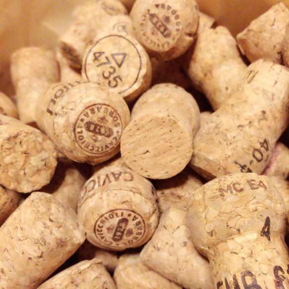 シャンパンコルク*10個 木材・...