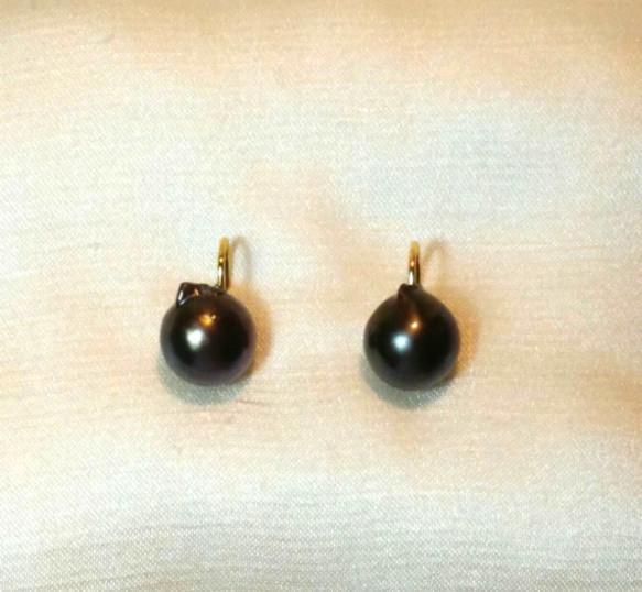 buy online 0ab32 5c105 本真珠のソリティア・ピアス(1)