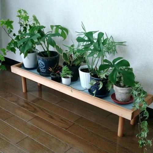 【人気No1 】観葉植物ラック.飾り台
