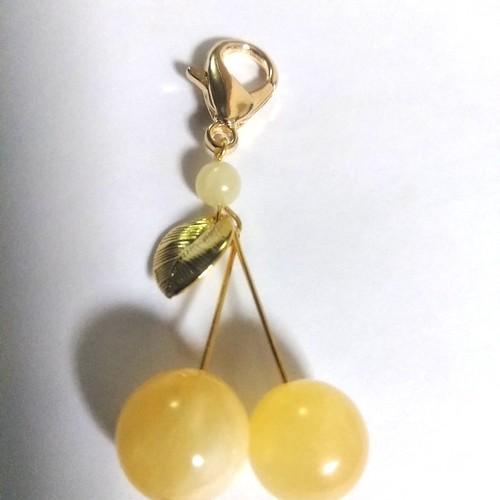 サクランボ 黄色い さくらんぼ 苗木