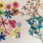 手作りのお花の素材やさん しもで