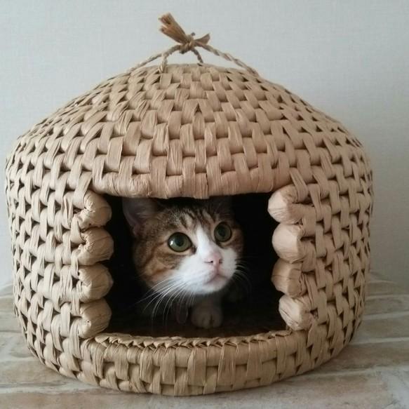 猫まっちぐらの「猫ちぐら」もどきを自作する人が続出!作り方は?あさチャン