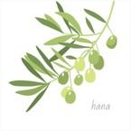 オリーブの木 -hana-