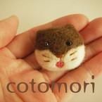 cotomori
