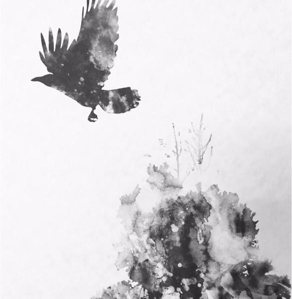 A4判 モノクロアートポスター 杉の木とカラス イラスト Hal0819 通販