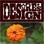 DESiRE's DESiGN