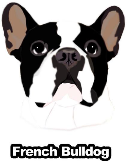 フレンチブルドッグ リアルステッカー 犬 犬ステッカー シール 車 グッズ