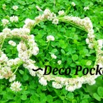 Deco Pocket