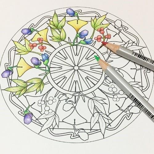 F01 こころを整える*お花のマンダラ塗り絵【6枚セット】 イラスト ...