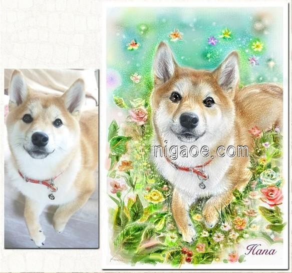 犬柴犬の似顔絵イラスト制作しますa4額入 おもちゃペット小物 Teo