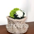 Linolana