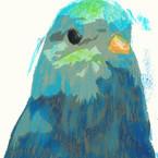 川越体験工房・青い鳥