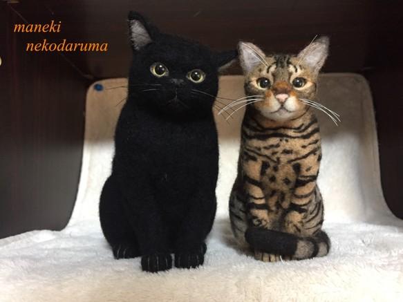 オーダー 愛猫 アメリカンショートヘアー 黒猫 羊毛フェルト 招き猫