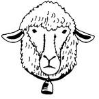 pecora e pecora