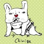 chirige