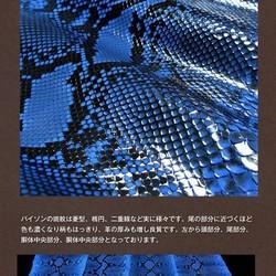 15cabd268405 クローナ ダイヤモンドパイソン ラウンドファスナー 蛇革長財布 KRONA307-PYFCG-BLBK C