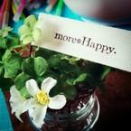 more*Happy.