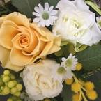Fleur K