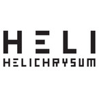 HELI(ヘリクリサム)