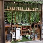 L natural factory